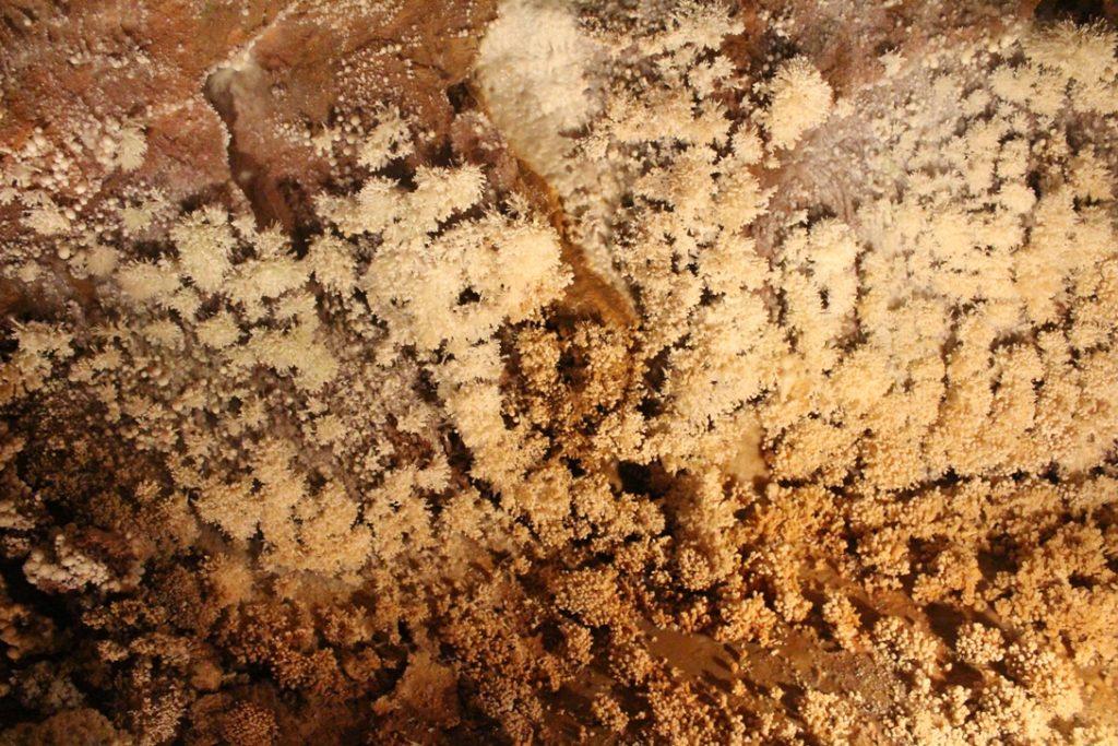 grotta di Santa Lucia alle grotte di Toirano