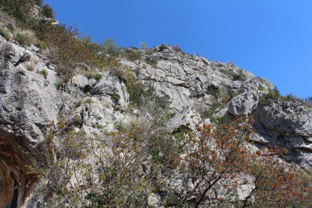 uscita delle grotte di Toirano