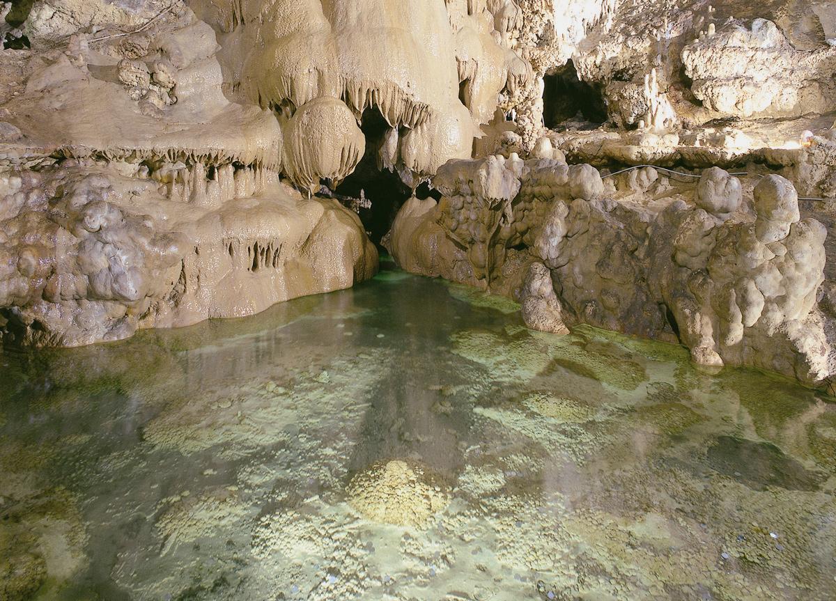 Visite des grottes de Toirano
