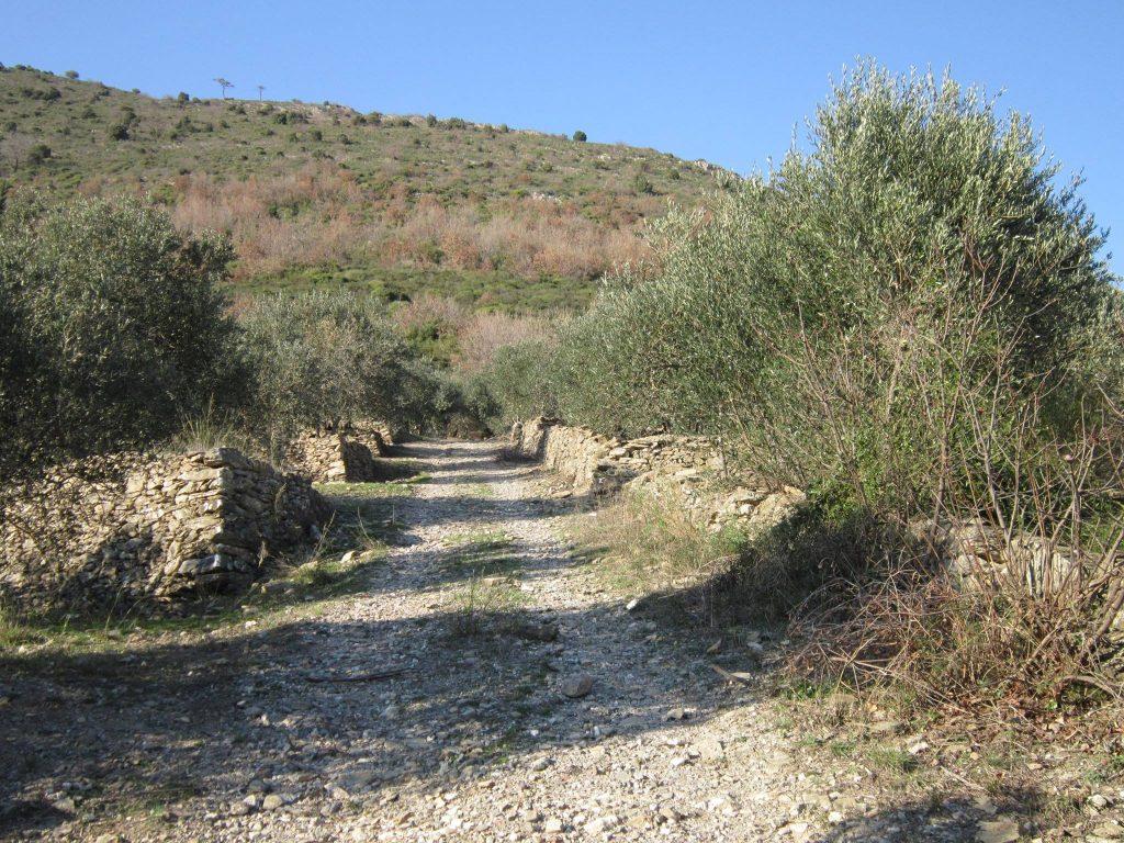 passegiate in valle Ibà a Ceriale