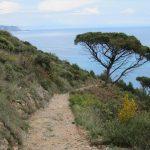 Sentiero trekking in Liguria