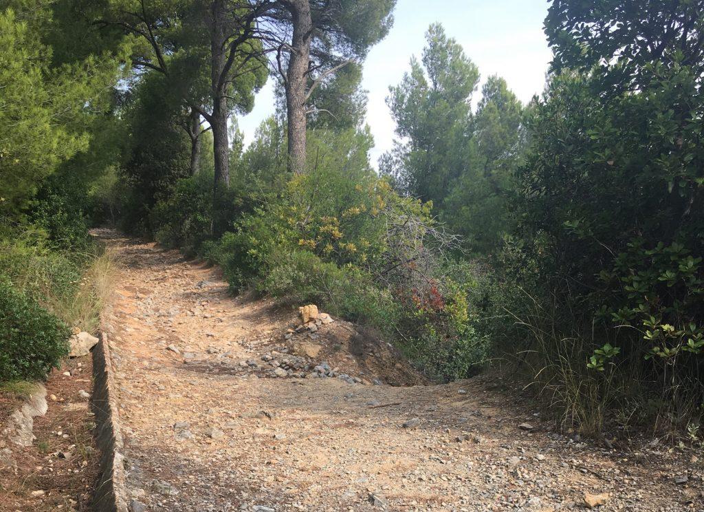 Passeggiata trekkung sul Piccaro