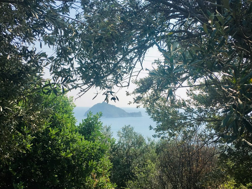 View-of.gallinara-island-from-Iulia-Augusta