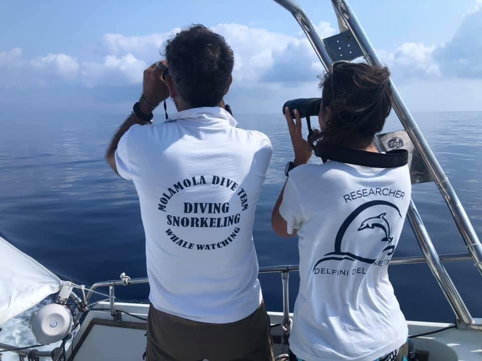 equipaggio con binoccolo per avvistamento cetacei